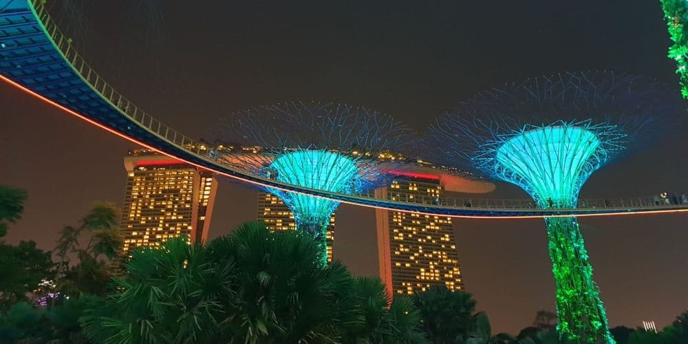 gardens by the bay supertrees in singapore