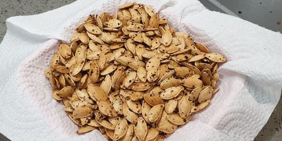 roasted pumpkin seeds healthy snack