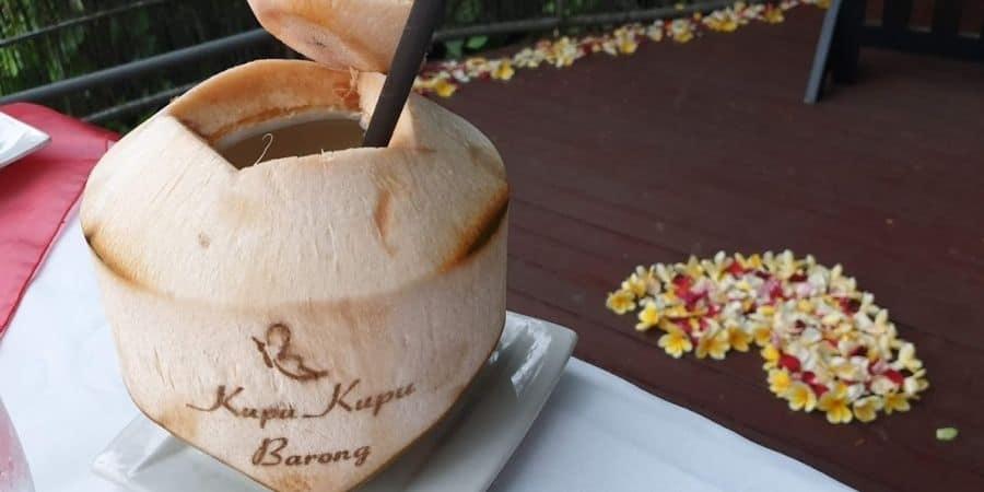 Kupu Kupu Barong Bali