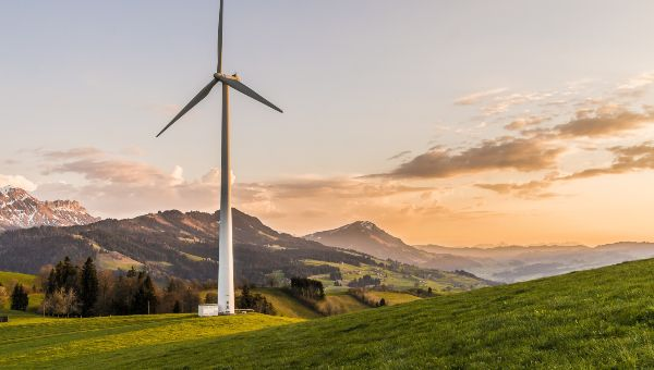 environmentally friendly green landscape